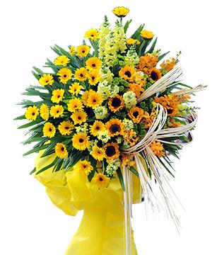 HOA CHÚC MỪNG - SUCCESS FLOWERS-HKT-011