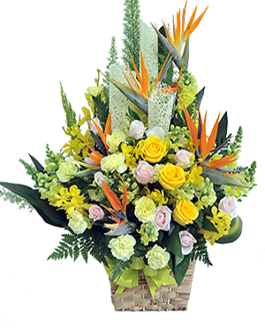 GIỎ HOA SINH NHẬT ĐỒNG NGHIỆP - BEST WISHES-GH-009